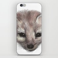 Pine Marten iPhone & iPod Skin