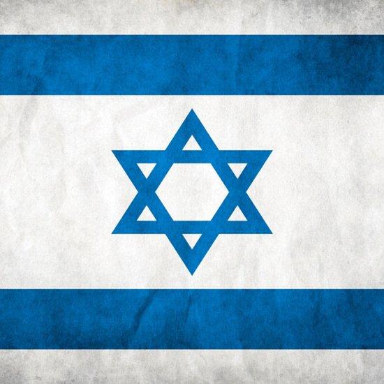 Israel Flag  Art Print
