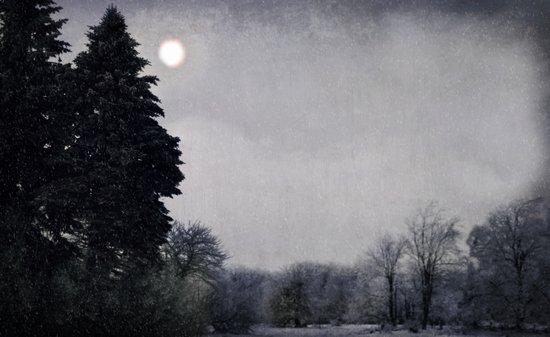 Snowy night Art Print