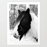 Horse. Black+White.Snow. Art Print