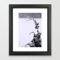 Winter Greens - Snow Framed Art Print