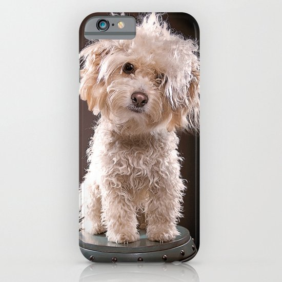 a portrait of my dog iPhone & iPod Case