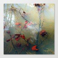 Delusions of Grandeur Canvas Print