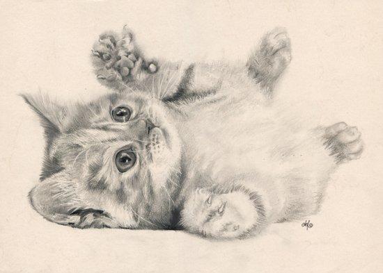 Rub my belly... Art Print