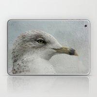 Gull Laptop & iPad Skin