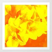 Ali orange Art Print