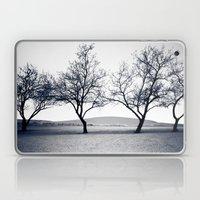 bruneau sand dunes. Laptop & iPad Skin