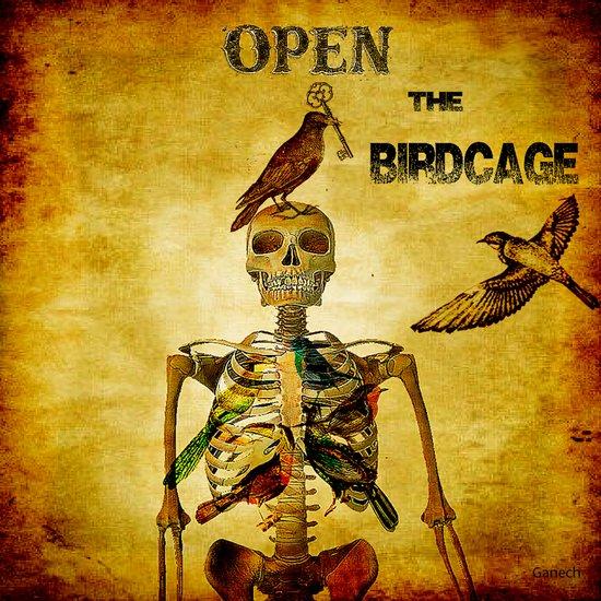 Open the Birdcage Art Print