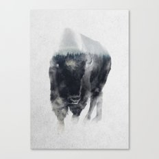Bison In Mist Canvas Print