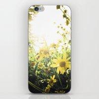 LUV IN THE SUN iPhone & iPod Skin