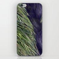 Water 1 iPhone & iPod Skin