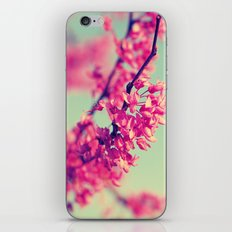 Spring Fling iPhone & iPod Skin