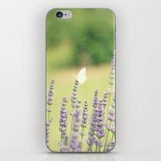 flutterby iPhone & iPod Skin