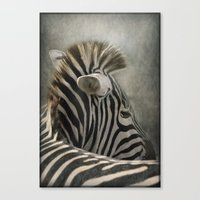 The striped Mohican Canvas Print