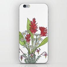 Healing iPhone & iPod Skin