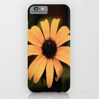 iPhone & iPod Case featuring Faded Sunflower by Beckah Carney Photography