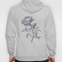 Graphic drawing roses Hoody