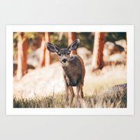 yeah i'm a deer .  Art Print