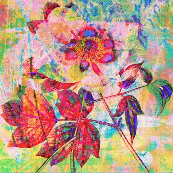 abstract anemone Art Print
