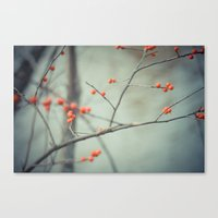 Berries. Canvas Print