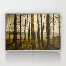 Afternoon Sunlight with Lens Flare Laptop & iPad Skin
