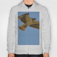 Osprey In Flight Hoody