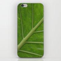 Elephant Ear Leaf iPhone & iPod Skin