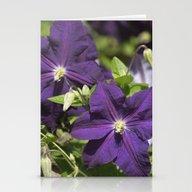 Longwood Gardens - Sprin… Stationery Cards