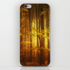 Yellow Fall iPhone & iPod Skin