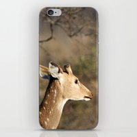 Dear Deer iPhone & iPod Skin