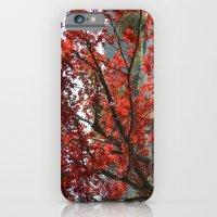 Japanese Maple iPhone 6 Slim Case