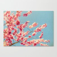 MEMORY IN PINK Canvas Print