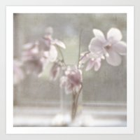 Magnolia Magic Art Print