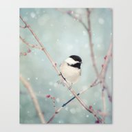 Chickadee In Snow No. 18… Canvas Print