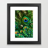 Eye of the Peacock Framed Art Print