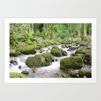 Windermere Creek Art Print