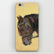 Horse - Portrait iPhone & iPod Skin