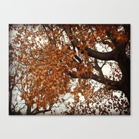 Colors Thriving As The L… Canvas Print