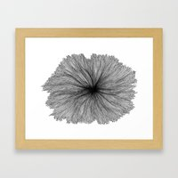 Jellyfish Flower B&W Framed Art Print