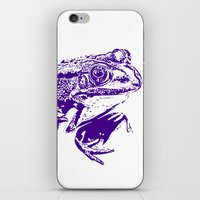 purple frog II iPhone & iPod Skin