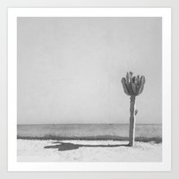 Cactus - In Black & Whit… Art Print