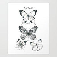 Lepidoptera Study Black … Art Print