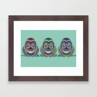 Three Owls Framed Art Print