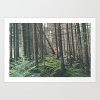 Mini - Woods Art Print