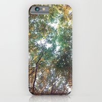 Forest 011 iPhone 6 Slim Case