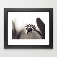 Field Dragon Framed Art Print