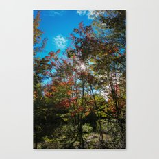 Blue Skies Above Me, Autumn Leaves Surround Me Canvas Print