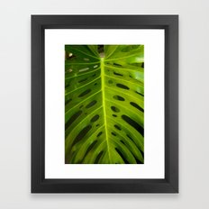 Botanical dream Framed Art Print
