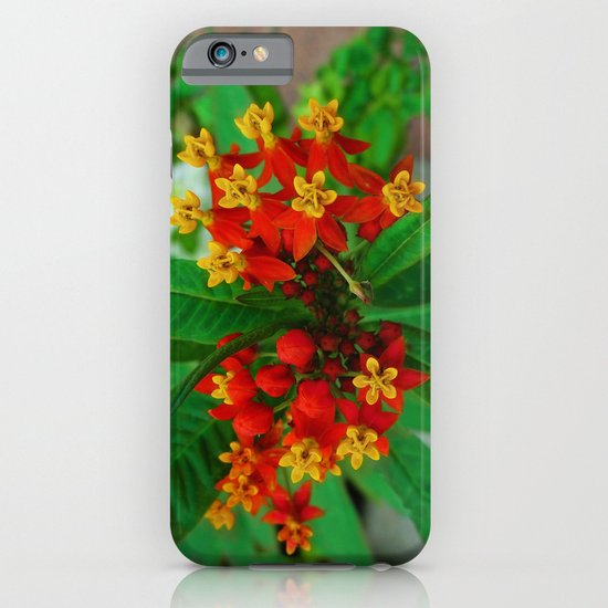 Orange and Yellow Flowers iPhone & iPod Case
