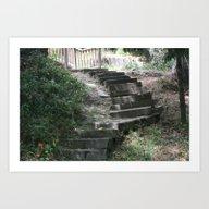 Hidden Steps Art Print